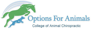 Options for Animals (Linked to International Academy of Veterinary Chiropractic)