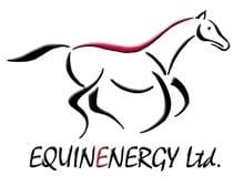 Equine Orthopaedic photo